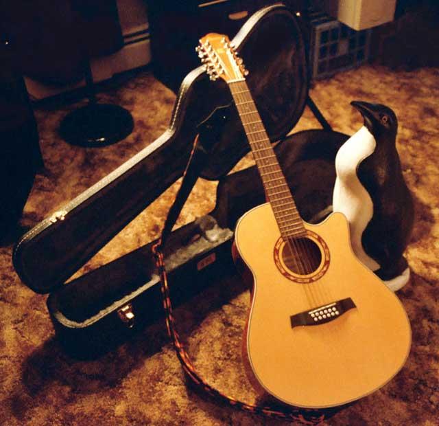 Ce trebuie sa stim despre o chitara?