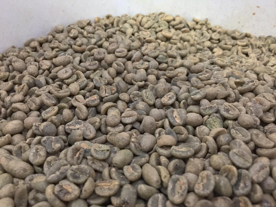 green-coffee-plus-poza